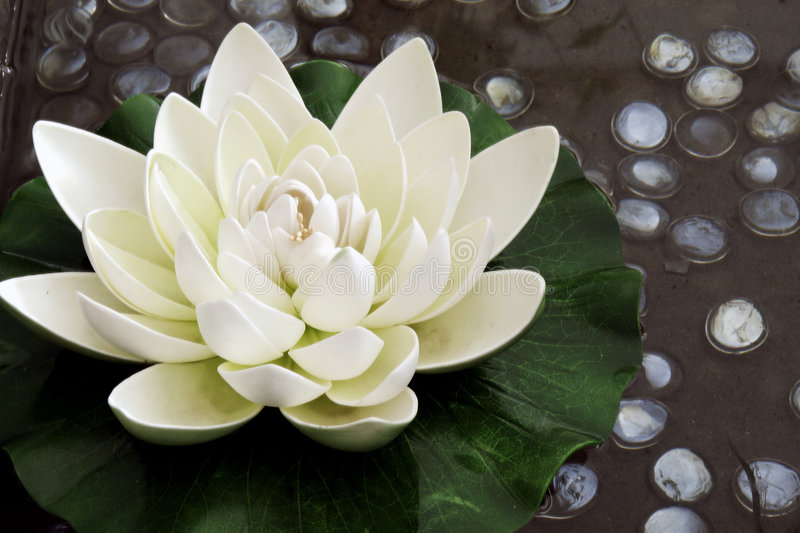 The Artificial Lotus Flower Stock Photo Image Of Flowers