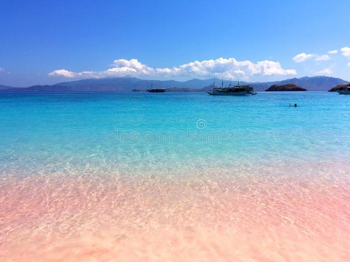 A Beautiful Pink Beach And Blue Clear Water From Komodo ...
