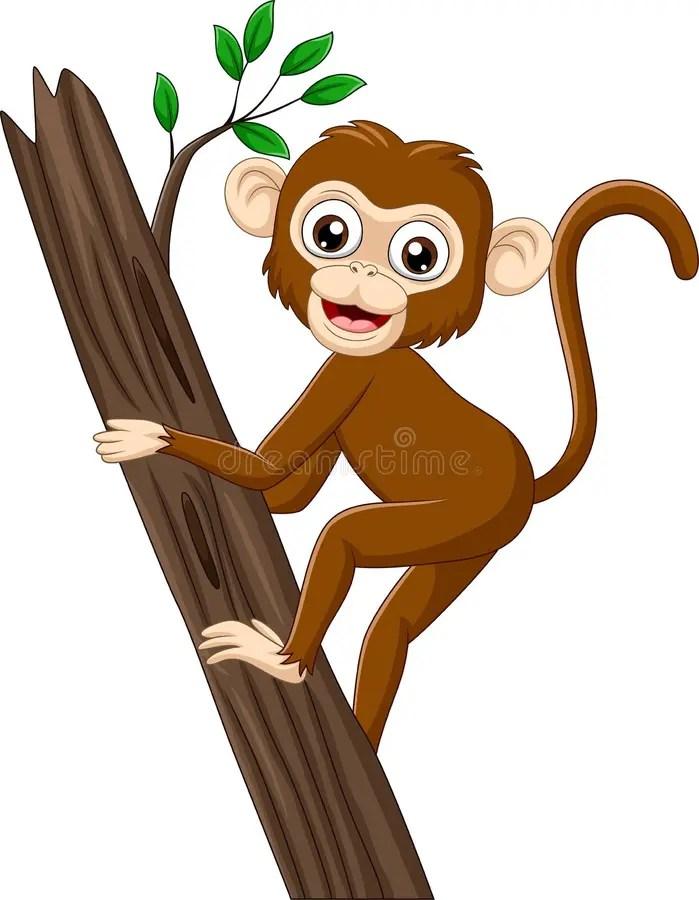 Cartoon Baby Monkey Stock Illustrations 7 977 Cartoon Baby Monkey Stock Illustrations Vectors Clipart Dreamstime