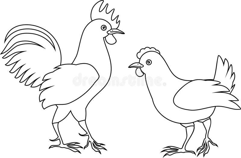 Coloring Page With Hen And Rooster Stock Vector Illustration Of Female Background 124940637