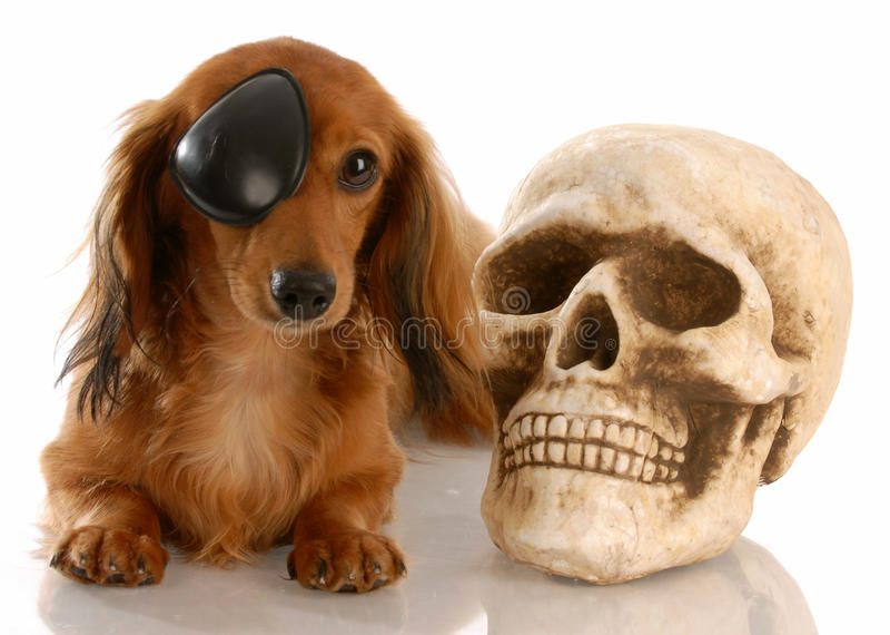 Bandana Patch And Skull Eye Crossbones