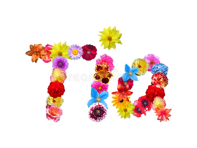 Flowers Name Tia stock illustration  Illustration of baby   85442979 Download Flowers Name Tia stock illustration  Illustration of baby    85442979