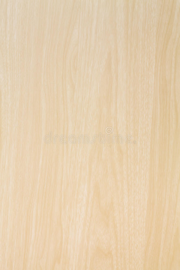 high resolution blonde wood stock image