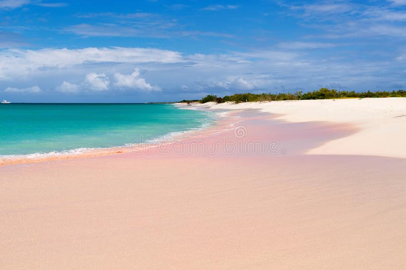 Pink Sand Beach Stock Image Image Of Antigua Pink 101388413