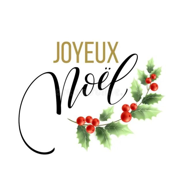 Merry christmas card template greetings french language joyeux noel vector illustration eps 79811489gresize618618ssl1 merry christmas card template with greetings in french language m4hsunfo