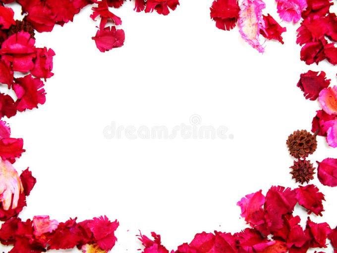 cute pink borders and frames path decorations pictures full path