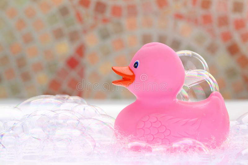 Pink Rubber Duck Stock Image Image Of Background Float