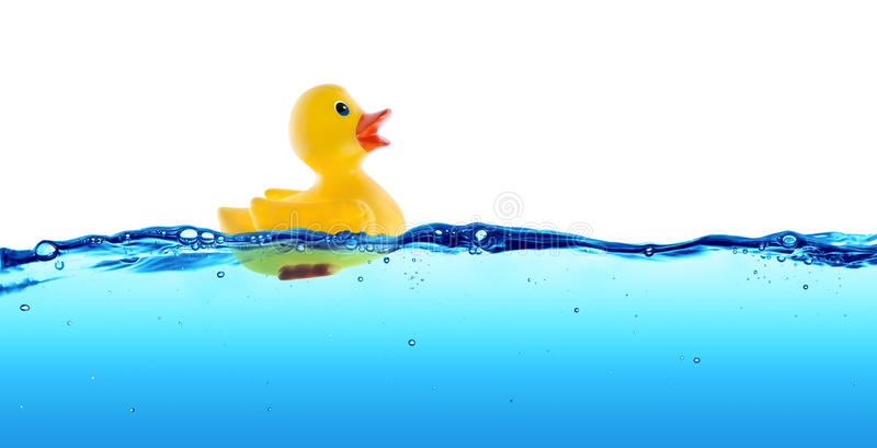 Rubber Duck Float Stock Photo Image 57669305