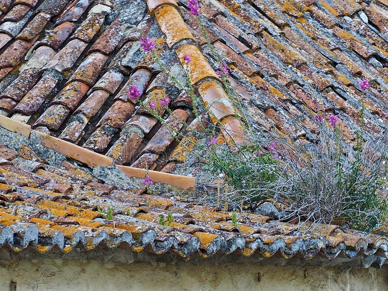 vintage roof of a house with colorful roof tiles stock photo image of colorful ornamental 182062838