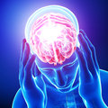 Male brain pain