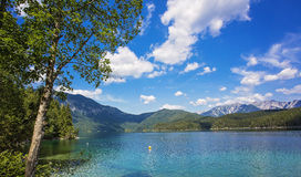 Hintersee Alpes Autriche LEurope Photo Stock Image