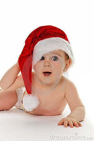 animals wearing santa hats baby wearing santa hat 8549140 jpg
