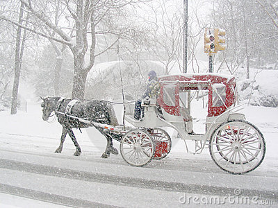 Carriage In The Snow Stock Image Image 64011
