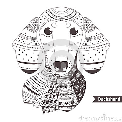 dachshund coloring book for stock vector image 74047297