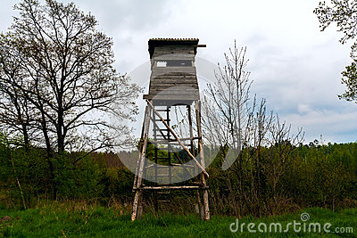 Hunting lookout tower forest