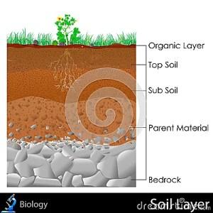 Layer Of Soil Stock Photos  Image: 31606153