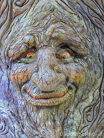 Tree Face Royalty Free Stock Photography Image 34969537