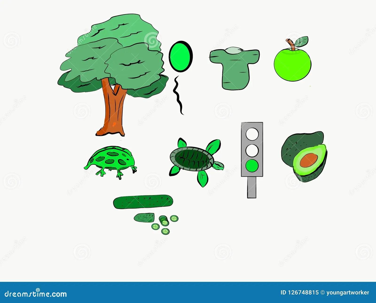 Que Clase De Cosas Es El Color Verde Stock De