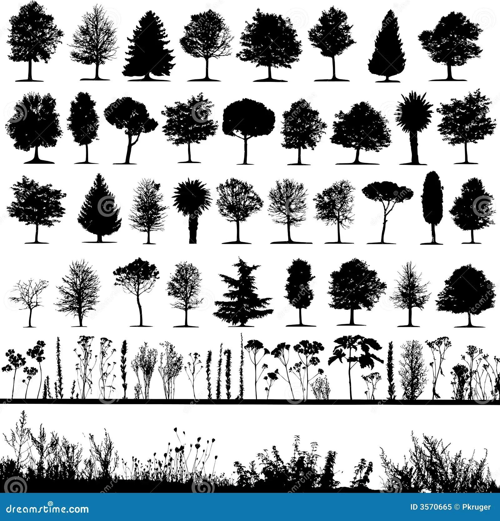Arboles Hierba Vector De La Planta Foto De Archivo Libre
