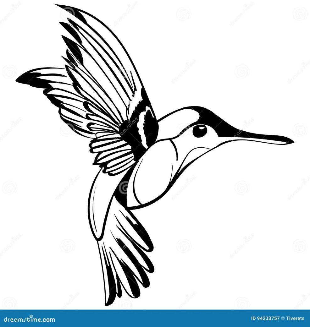 нарисованный рукой чертеж Colibri эскиза татуировки иллюстрация