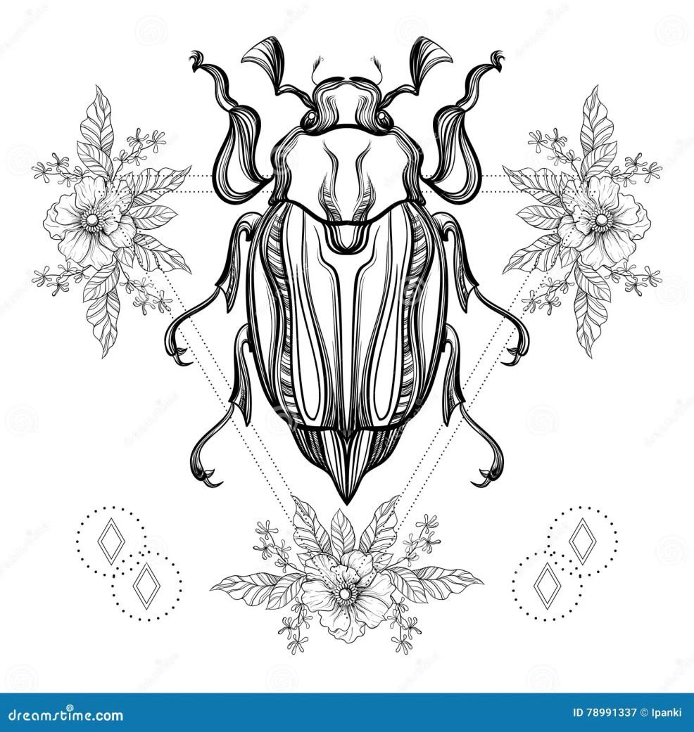 татуировка Boho жук скарабея Blackwork иллюстрация вектора