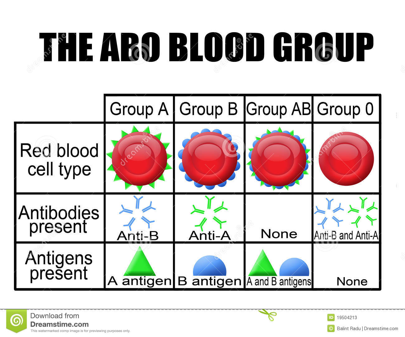 The Abo Blood Group Diagram Stock Illustration