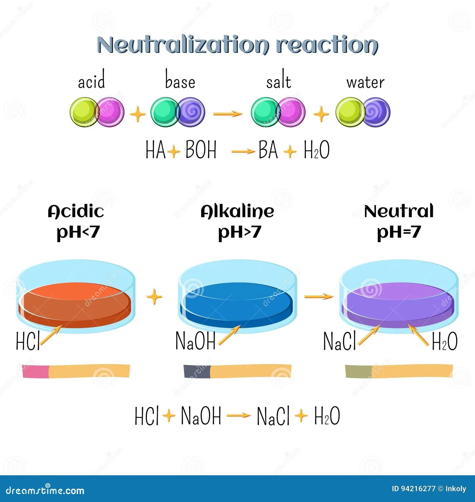 Acid Base Neutralization Reaction Of Hydrochloric Acid