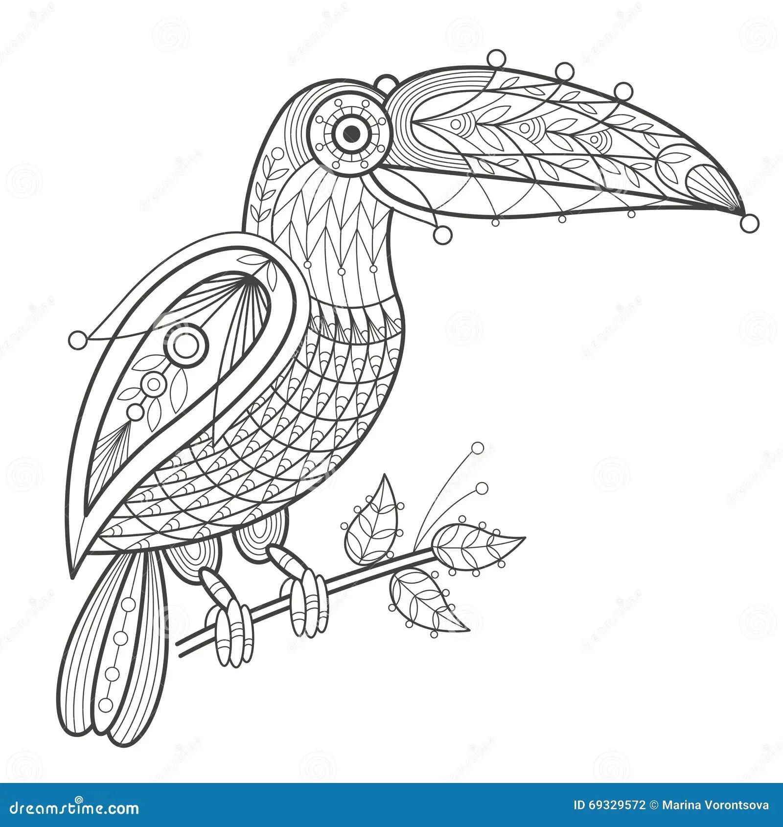 Adult Coloring Bird Toucan Stock Vector