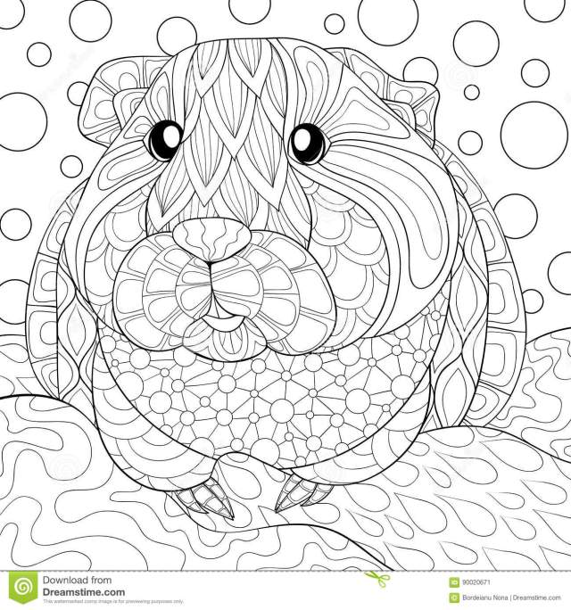 Adult Coloring Page Guinea Pig Stock Vector - Illustration of book