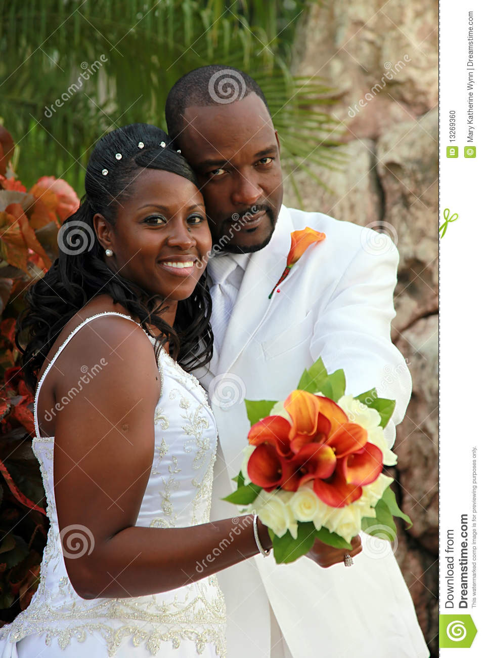 African American Wedding Couple Stock Photo Image 13269360