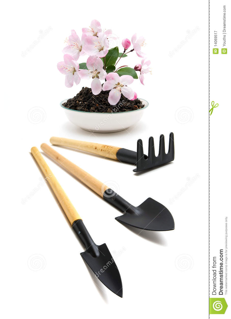 Agricultural Tools And Flower Royalty Free Stock