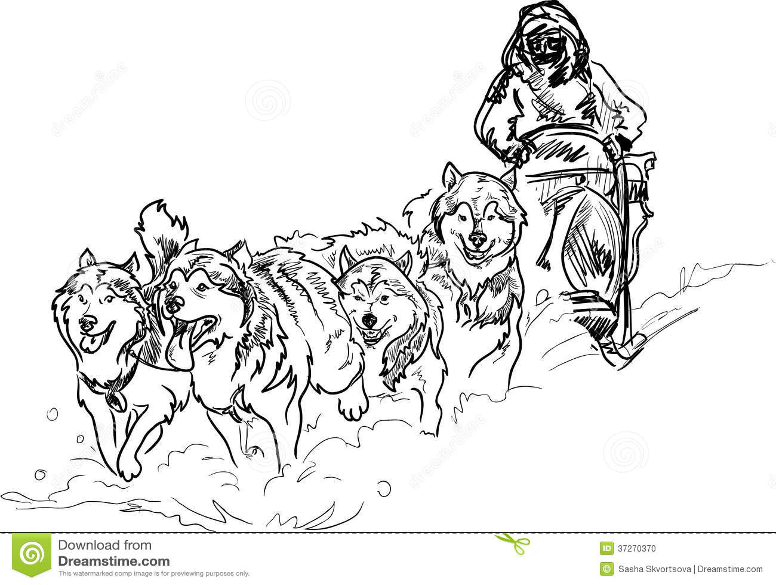 Alaskan Sled Dogs Stock Photo
