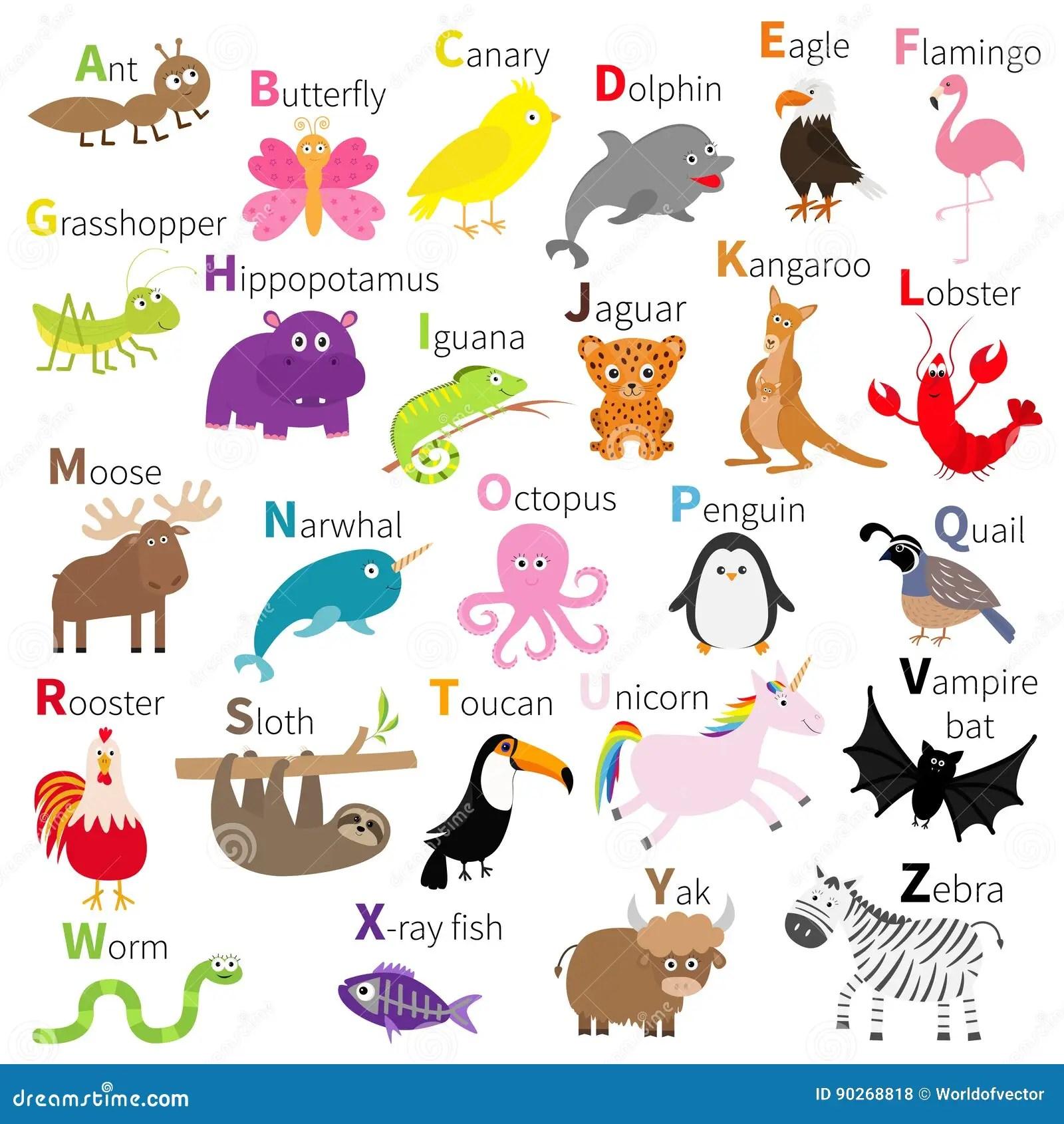 Alfabeto Del Animal Del Parque Zoologico Juego De