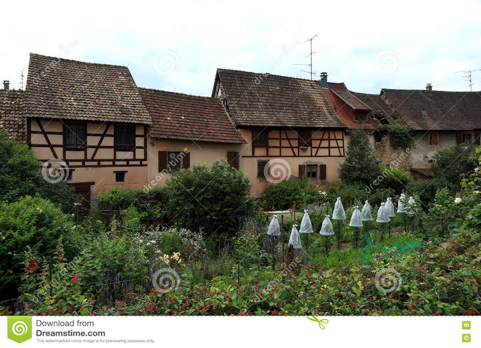 Alte Bauernhäuser In Elsass, Frankreich Stockbild - Bild