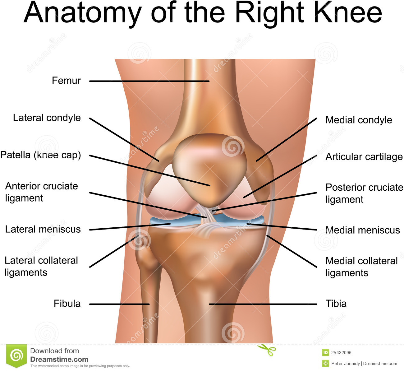 Diagram of knee injuries house wiring diagram symbols pop goes the acl 5 simple ways to decrease knee injury openworkout rh openworkout wordpress com itbs knee diagram knee joint diagram ccuart Choice Image