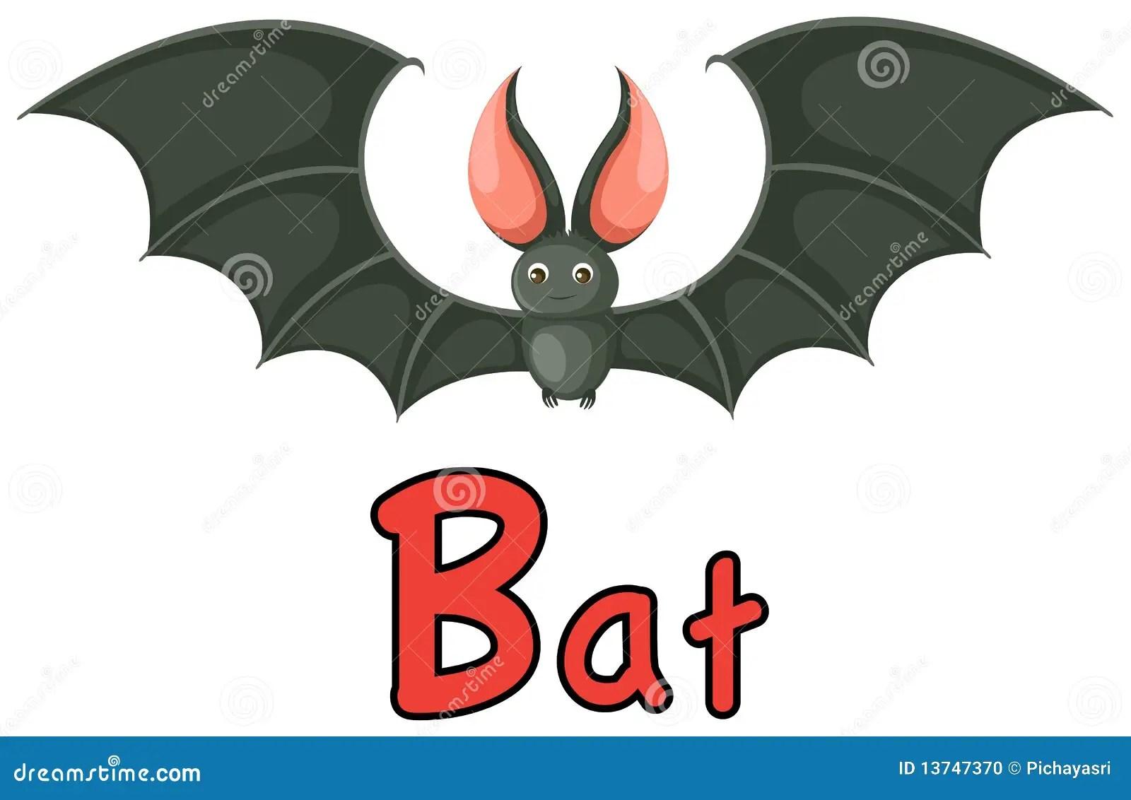 Animal Alphabet B For Bat Stock Vector Illustration Of