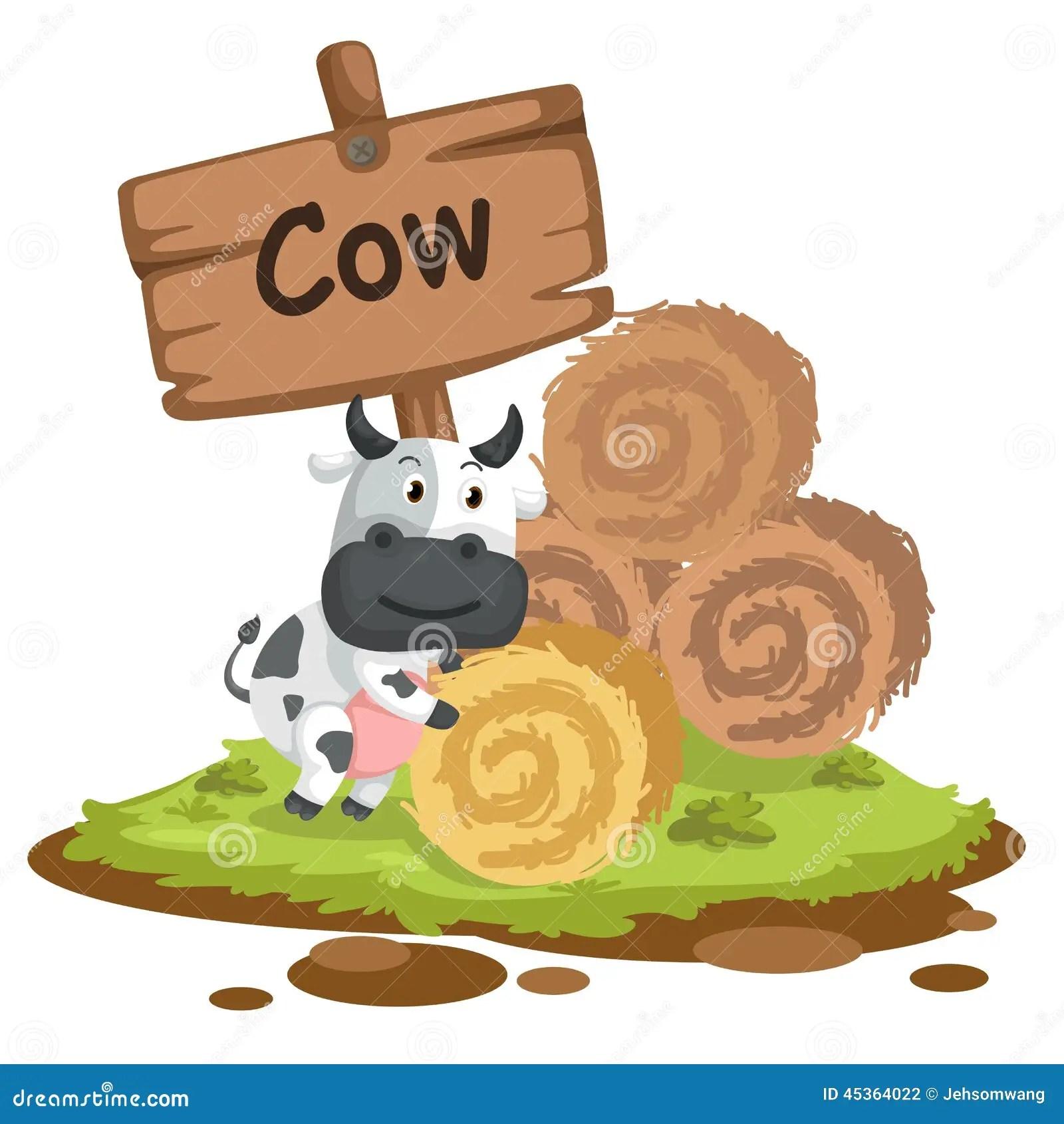 Animal Alphabet Letter C For Cow Stock Vector