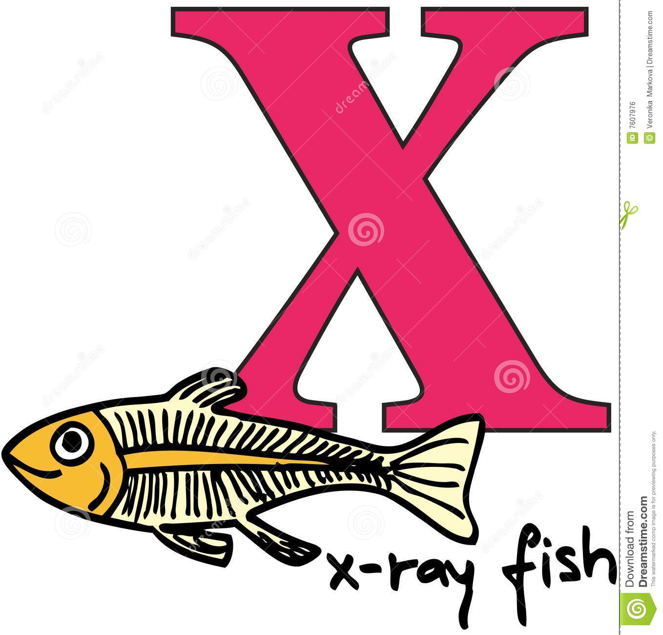 Animal Alphabet X X Ray Fish Vector Illustration
