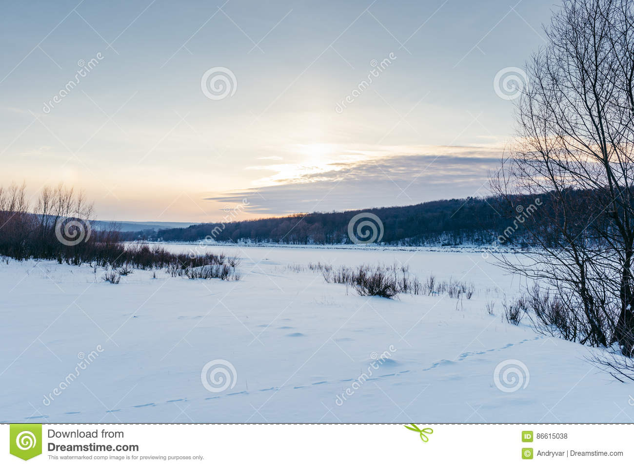 Animal Tracks In The Winter Snow Stock Photo