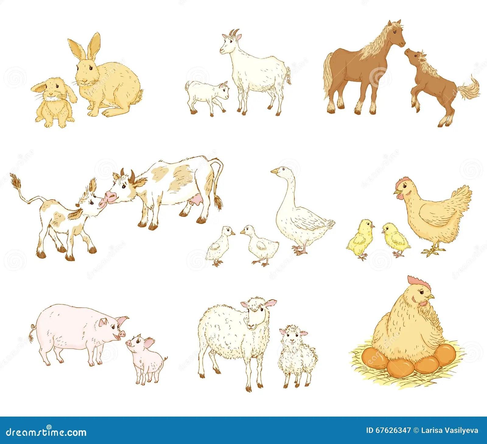 Animali Della Madre E Del Bambino Illustrazione Vettoriale