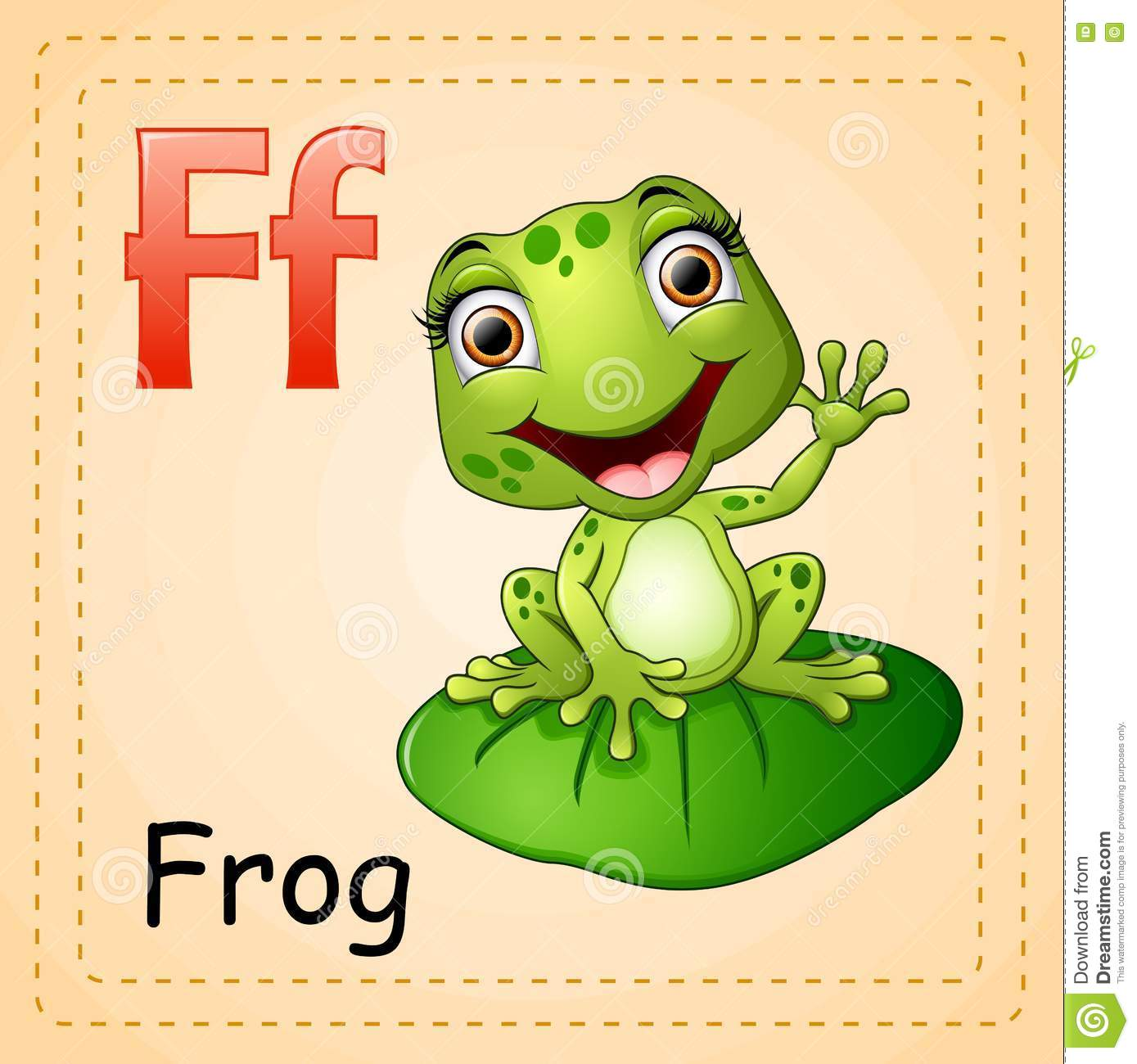 Animals Alphabet F Is For Frog Stock Vector