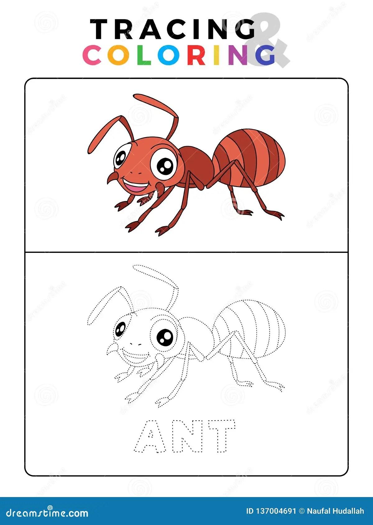 Ant Insect Animal Tracing E Libro Da Colorare Divertenti