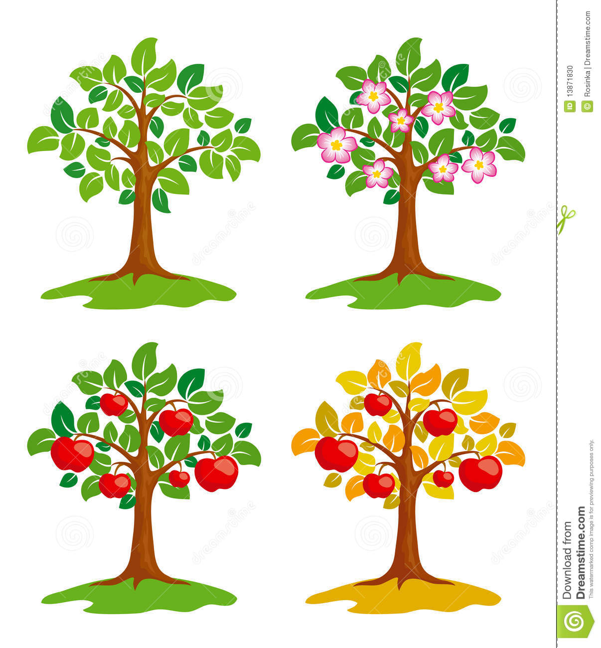 Apple Tree At Different Seasons Stock Vector