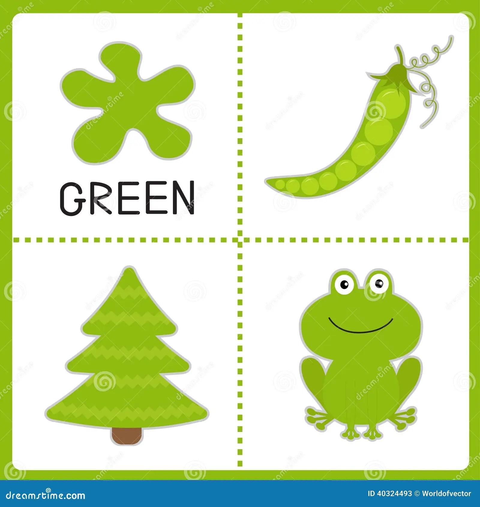 Aprendizaje De Color Verde Rana Guisante Verde Y Arbol