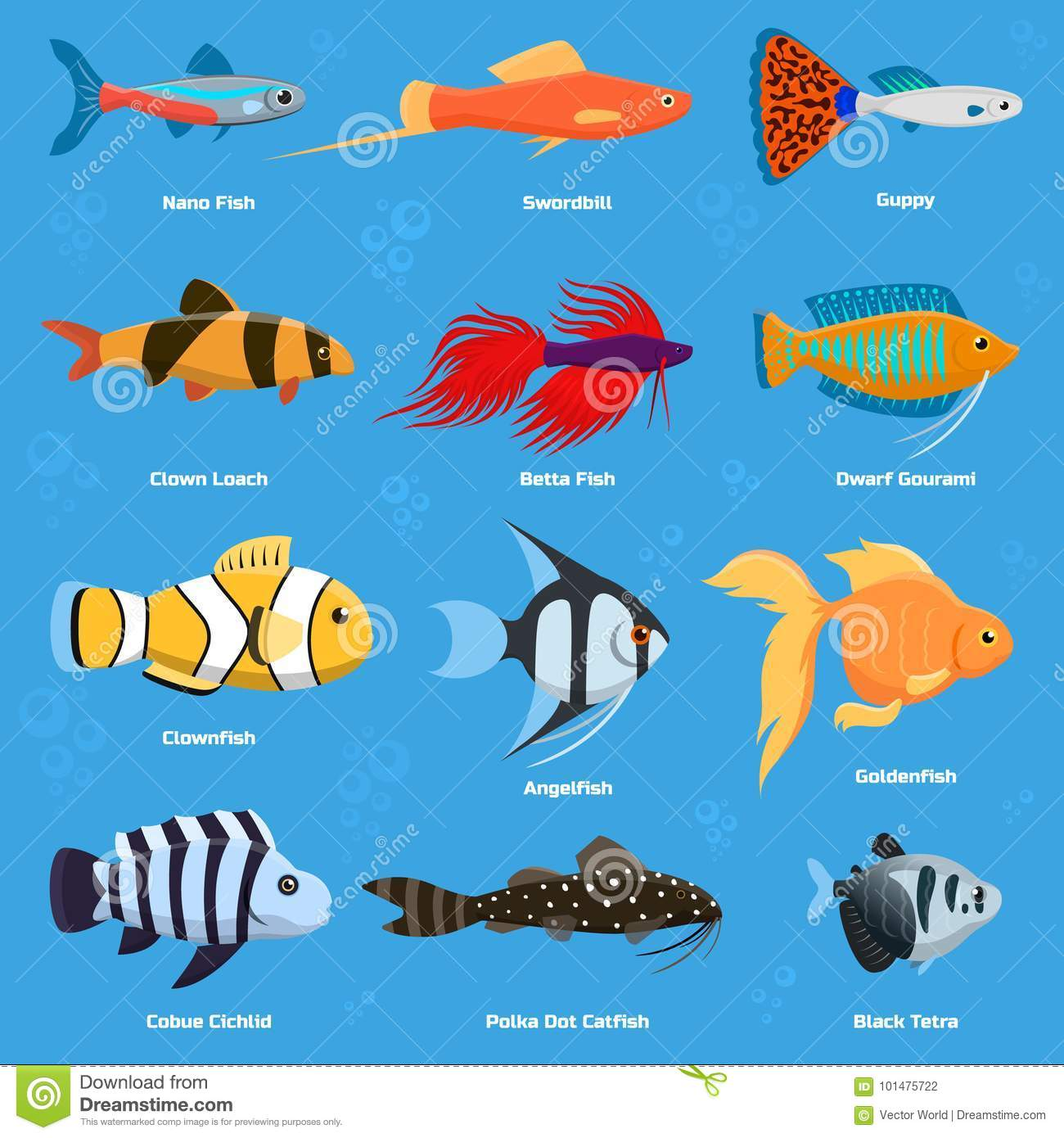 Aquarium And Ocean Fish Breeds Underwater Bowl Tropical Aquatic Animals Water Nature Pet Characters Vector Illustration Stock Vector Illustration Of Aquarium Lace 101475722