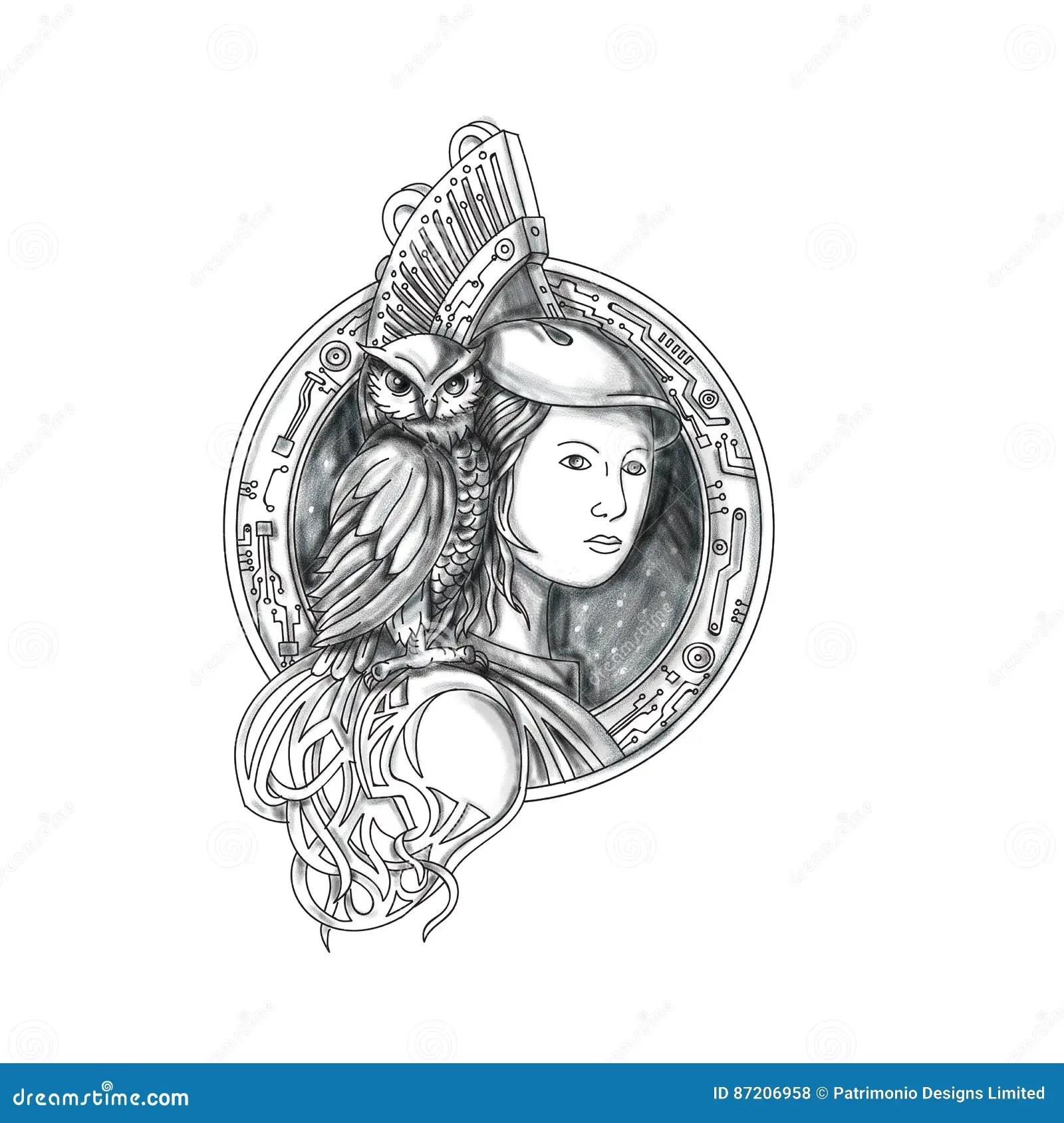 Athena Avec Le Hibou Sur Le Tatouage De Cercle De Circuit