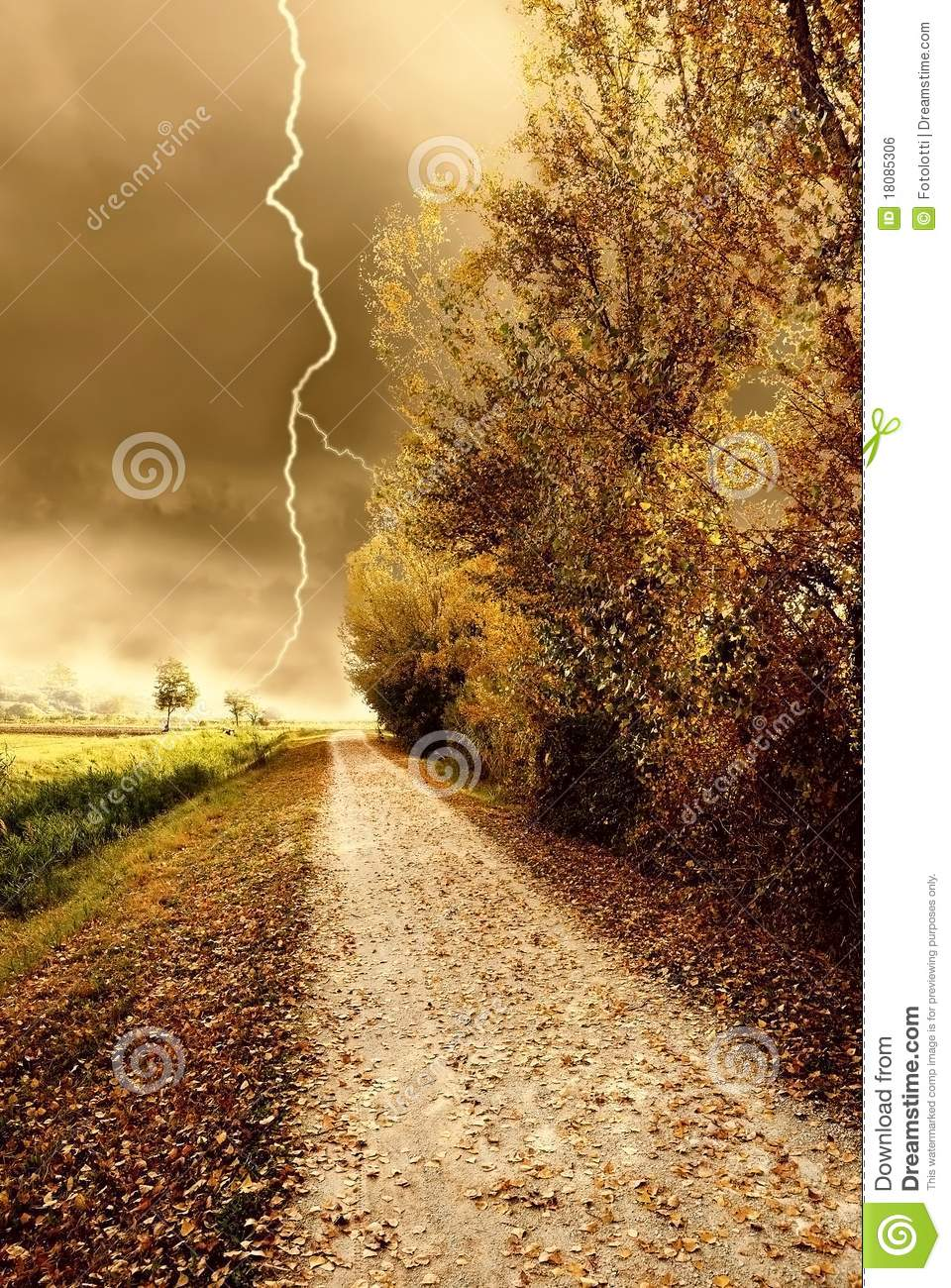 Autumn Storm In The Park Royalty Free Stock Image Image