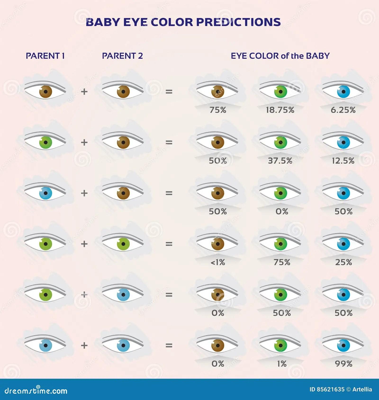 Eye Color Genetics Calculator Topsimages