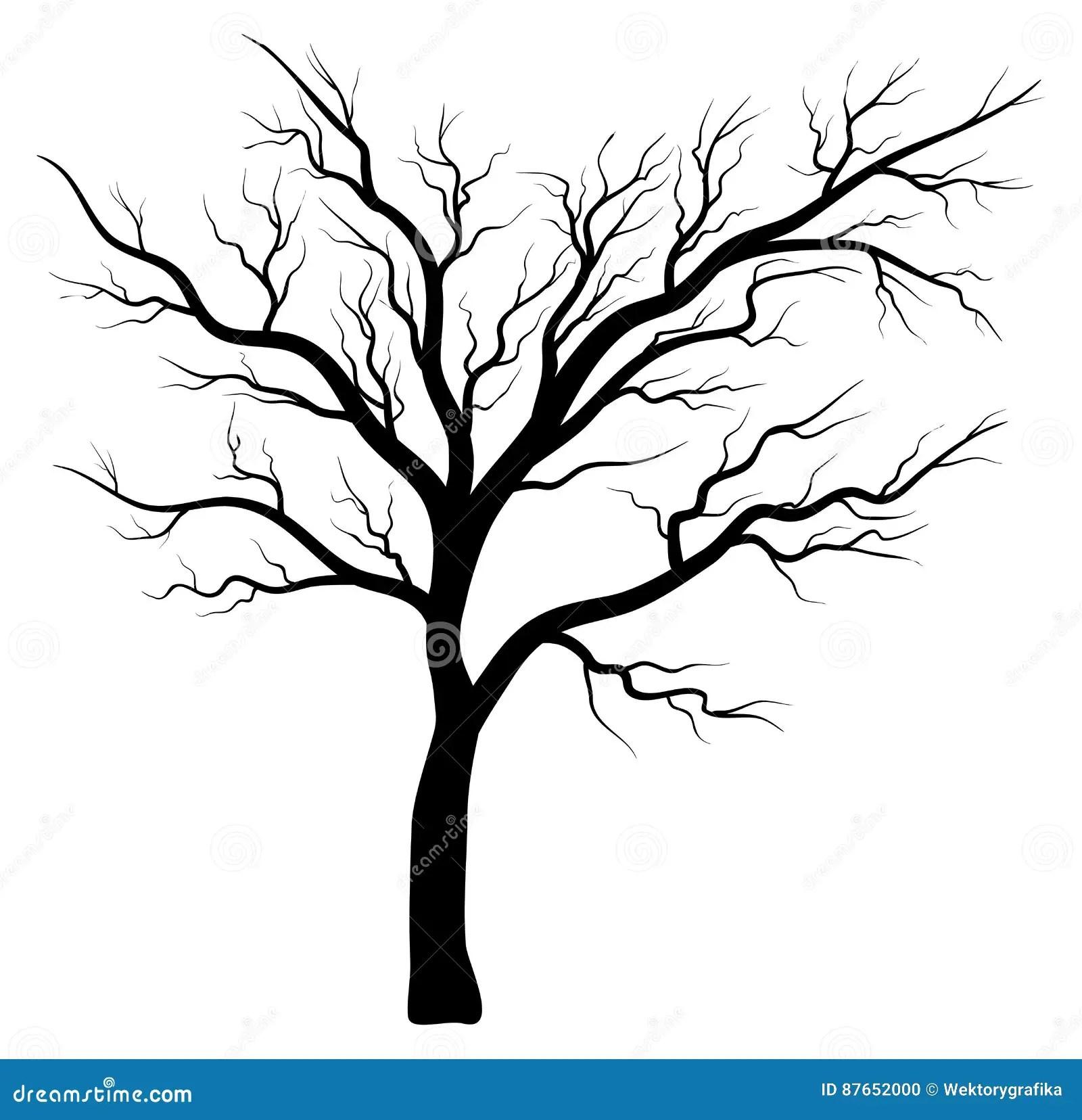 Bare Tree Silhouette Stock Illustrations 3 129 Bare Tree