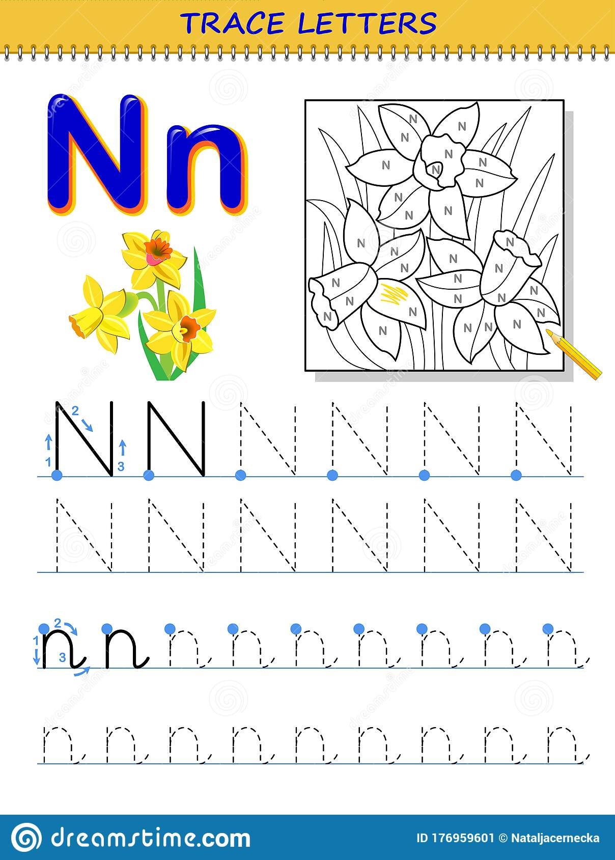 Tracing Letter N For Study Alphabet Printable Worksheet